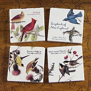 View Songbirds of New England Coasters - Set of 4 image