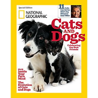 View National Geographic Cats and Dogs Special Issue image