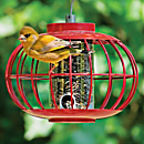 Chinese Lantern Bird Feeder