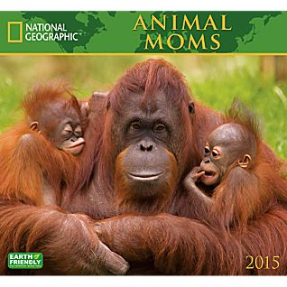 View 2015 National Geographic Animal Moms Wall Calendar image