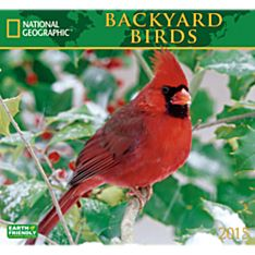 2015 National Geographic Backyard Birds Wall Calendar