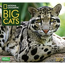 2015Big Cats Wall Calendar