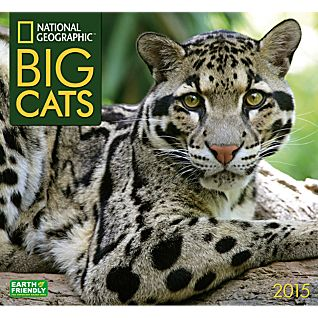 2015 National Geographic Big Cats Wall Calendar
