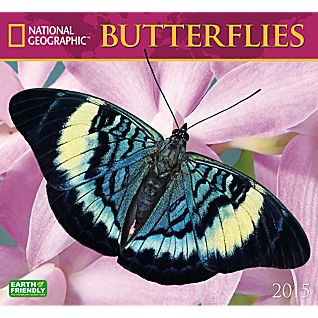 2015 National Geographic Butterflies Wall Calendar