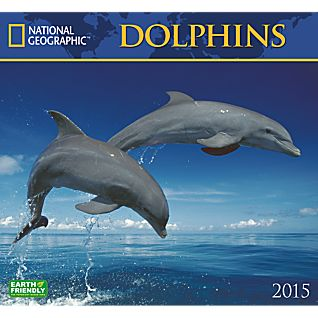 View 2015 National Geographic Dolphins Wall Calendar image