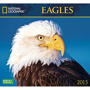 View 2015 National Geographic Eagles Wall Calendar image