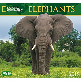 View 2015 National Geographic Elephants Wall Calendar image