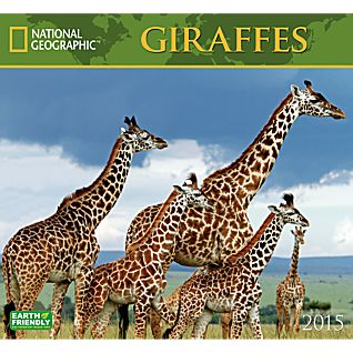 View 2015 National Geographic Giraffes Wall Calendar image
