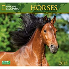 2015 National Geographic Horses Wall Calendar