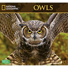 2015 National Geographic Owls Wall Calendar