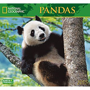 2015 National Geographic Pandas Wall Calendar