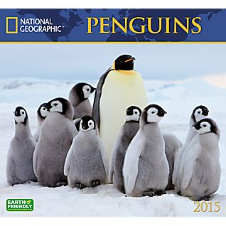 2015 National Geographic Penguins Wall Calendar