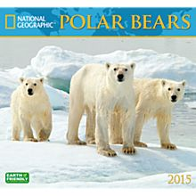 2015Polar Bears Wall Calendar
