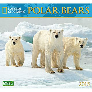 View 2015 National Geographic Polar Bears Wall Calendar image
