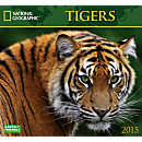 2015 National Geographic Tigers Wall Calendar