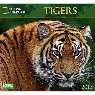 View 2015 National Geographic Tigers Wall Calendar image