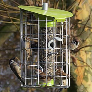 View Modernist Bird Feeder image