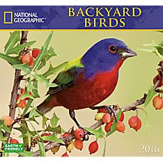 2016 National Geographic Backyard Birds Wall Calendar