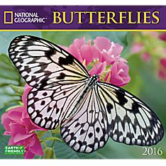 2016 National Geographic Butterflies Wall Calendar