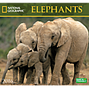 2016 National Geographic Elephants Wall Calendar