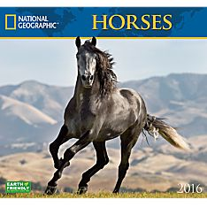 2016 National Geographic Horses Wall Calendar