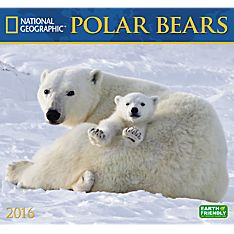2016Polar Bears Wall Calendar - 1554568838