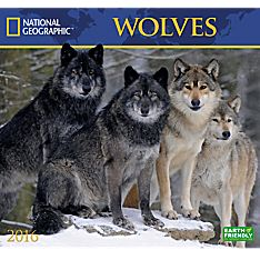 2016 National Geographic Wolves Wall Calendar