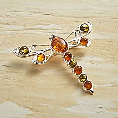 Baltic Amber Dragonfly Pin