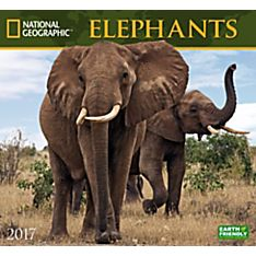 2017 Elephants National Geographic Wall Calendar