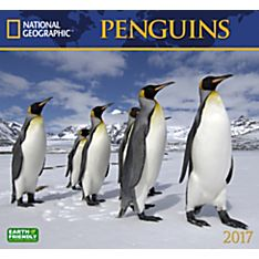 2017 Penguins National Geographic Wall Calendar