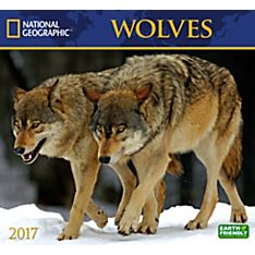 2017 Wolves National Geographic Wall Calendar