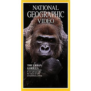 The Urban Gorilla Video