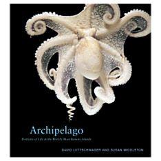 Archipelago, 2005