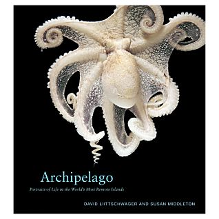 View Archipelago image