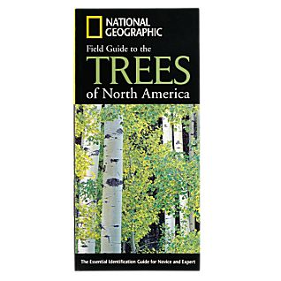 photo: National Geographic Field Guide to the Trees of North America