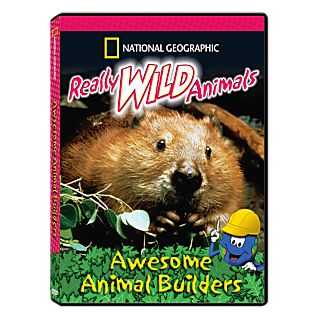 View Really Wild Animals: Awesome Animal Builders DVD image
