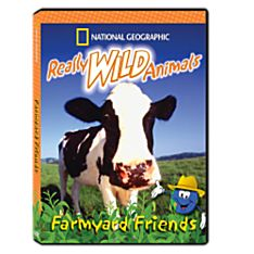 Animals in the Wild DVD for Kids