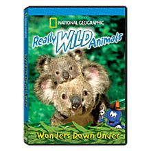 Really Wild Animals: Wonders Down Under DVD