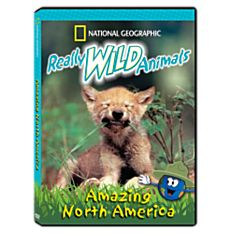 Really Wild Animals: Amazing North America DVD, 2005