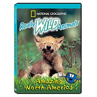 View Really Wild Animals: Amazing North America DVD image