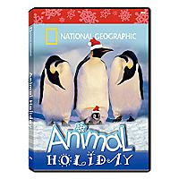 National Geographic Animal Holiday DVD