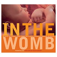 In the Womb Book