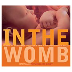 In the Womb Book, 2006