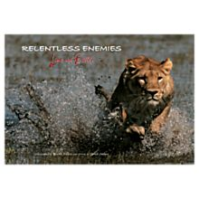 Relentless Enemies