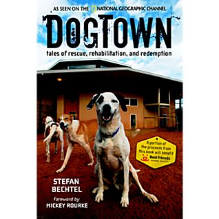 DogTown - Softcover