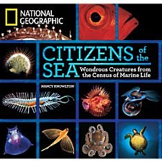 Books Ocean Sea Creatures