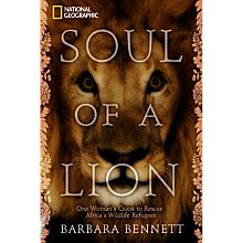 Soul of a Lion