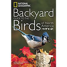 North America Guide Book of Birds