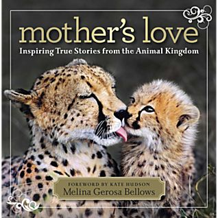 View Mother's Love image