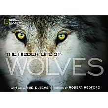 The Hidden Life of Wolves, 2013